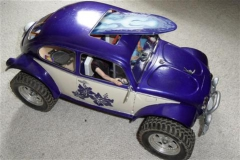 Rockabilly_Bug_008